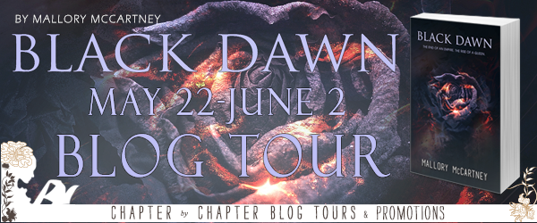 BlackDawnTour