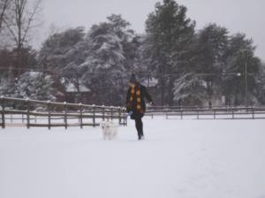 Snow_angela and aussie