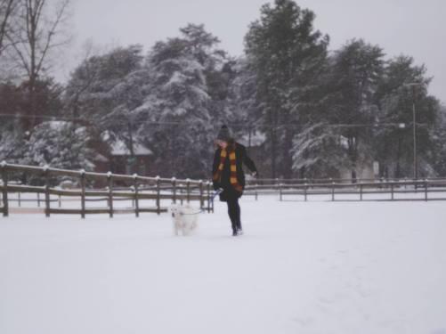 Snow_angela and aussie