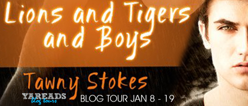 Lions Tigers and Boys Banner.png