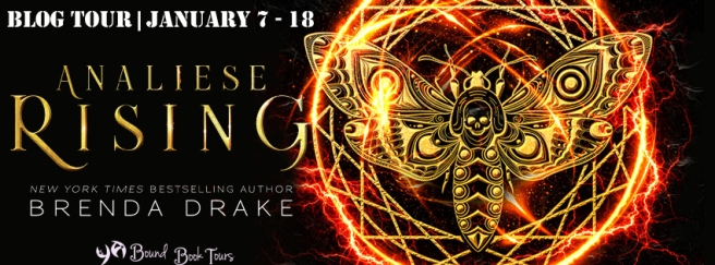 Analiese Rising tour banner.jpg