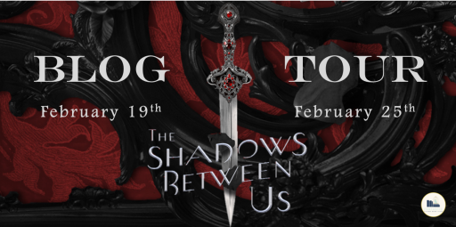 the shadows between us tour banner