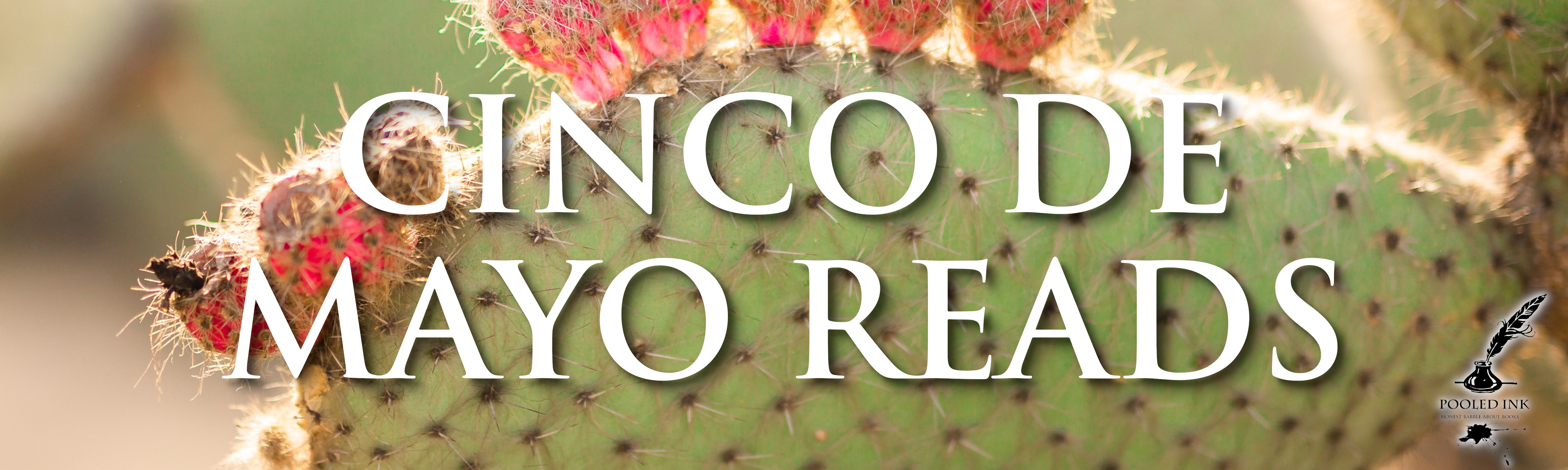 cinco de mayo reads banner