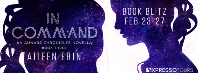 in-command-book-blitz-banner